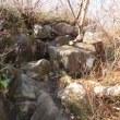 北海道低山紀行 80 シャクナゲ岳