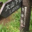 大山(1,251.7)