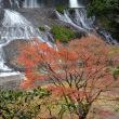 2495 秋彩の滝