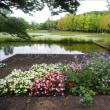 夏の花が満開の水戸市植物公園