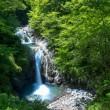 西沢渓谷を撮る