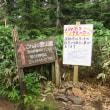 西穂高岳独標登山チャレンジ 13