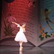 Ballet Concert20130724
