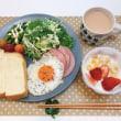 手作り食パンで朝ごはんと 私よりも大きな観葉植物が来た!!