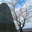 『桜便り』 駅前
