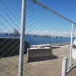 築港にて・・・台風21号の爪痕
