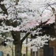 福島県国見町 御瀧神社