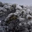 くじゅう、冬真っ只中p2(D810、18-35mm)