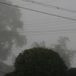 霧にむせぶ朝