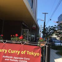 本物の日本のカレー?