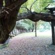 日光へ  含満ガ淵(かんまんがふち)裏見の滝 大日堂跡