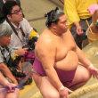 大相撲秋場所7日目