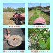 第2農園耕起