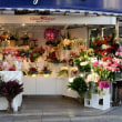 銀座四丁目の花屋さん