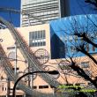 東京ど真ん中のアトラクション