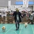 ペット博2019横浜 運動会に参戦したよ