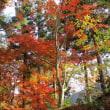 東北の秋を楽しむ旅(3日目)最終日 続き