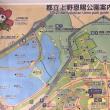 第10回ノルディックウォーキング事業 都立上野恩賜公園へ