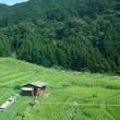 盛夏の熊野路へ・・・