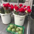 お盆用の花、飾りスイカ出荷