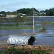 台風後の一面の水