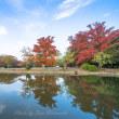 紅葉情報:11月15日岡山県総合グラウンド