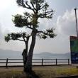 南九州ぶらり旅 「池田湖から薩摩富士 開聞岳」