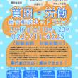 【7団体共催】2月16日(土)貧困・労働総合相談ホットラインを開催します!