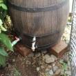 雨水タンクは庭のどこにでも設置することができる。トイから離れていてもね。