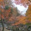 龍野  東山公園            2017.11.26.(2)