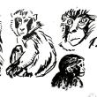 動物の練習画