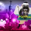 🐕 シーツ❔ ネコ砂❓ 🐈