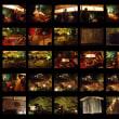 京都大原の散策&宝泉院(琵琶と声明の響演)