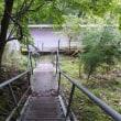 世界遺産大峯奥駆道を歩く  夏の終わりの南奥駈 行仙岳から平治宿を往復 2017年9月3日 その4