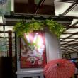 父に似ていた海老蔵…歌舞伎座『團菊祭五月歌舞伎』