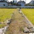 小原神社を訪ねる(香川の神社115)