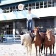 ゴールデンウィーク イベント ホースショー&馬との無料ふれあい体験