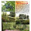 散策 「東京中心部南 342」 栖川宮記念公園
