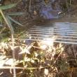 排水パイプの網を交換
