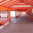 やっと会えたね厳島神社