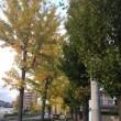 行楽の秋勤労感謝の日(よしだ麺)