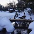 兼六園と金沢城公園の雪景色