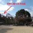 写真館を「No.864 そうだ、金閣寺に行っちゃおう!(その2)」に更新しました!