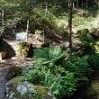 軽井沢のいろいろ 軽井沢の歴史ある別荘地では・・