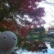 秋色の公園で・・・ by ウォン