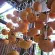 10月22日(日)柿の秋