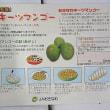 「キーツ」マンゴーの食べ頃表記事例集