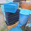 育苗箱とCell成型trayの洗浄