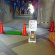 島根県で鳥インフルエンザの疑いが発生で東山動物園でも一部展示を閉鎖
