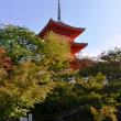 プレバト秋の京都俳句